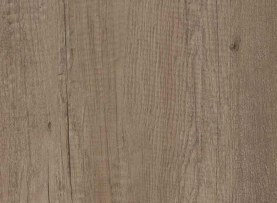 H3332 ST10 Grey Nebrasca Oak